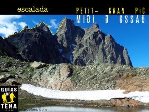 Anunucio MIDI PETIT GRAN