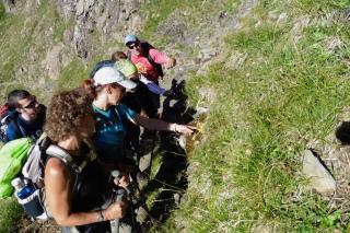 Admirando la Grasilla, planta carnívora endémica del Pirineo.