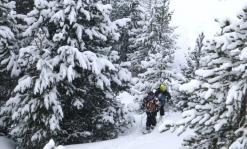 esquí de montaña iniciación guía