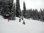Backcountry skiing in ICE CREEK LODGE, CANADA