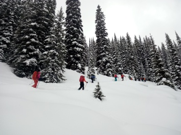 Backcountry skiing in ICE CREEK LODGE, CANADA